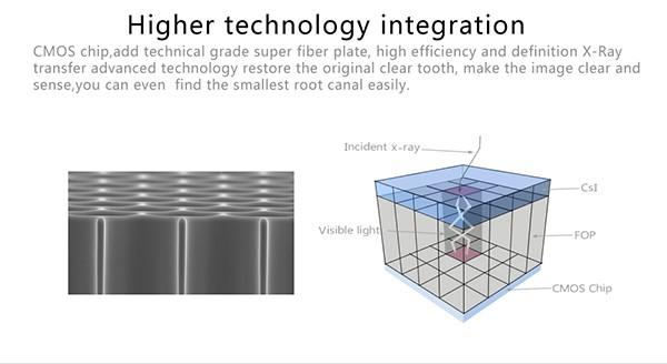 04 Digital dental x ray sensor YSDEN-500.jpg