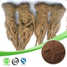 Hot sale Angelica Sinensis extract/Ferulic Acid 98%/Lower blood pressure plant extract