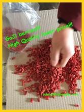 Supply Grade B Goji Berry/180 grains per 50g Dried Chinese wolfberry/Ningxia Chinese wolfberry