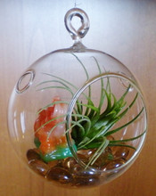 ball christmas glass transparent with different size MH-C602