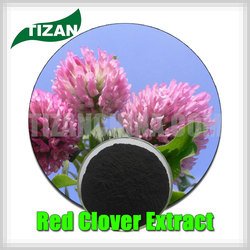 Hot sale Red Clover Extract Daidzein HPLC 1%