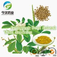 Fenugreek Seed Extract Fenugreek Total Saponins Manufacturer