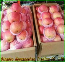 2014 fresh fruit fuji apple wholesale for dubai (In the preferential...)
