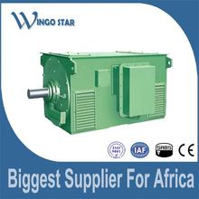 high voltage high torque low rpm electric motor