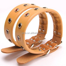 leather dog collar with rivet