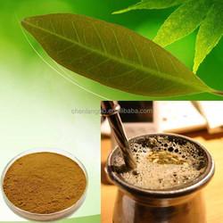 Quality Control Yerba Mate Extract/Paraguay Tea Polyphenol