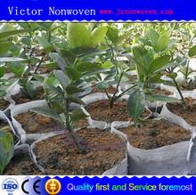 wholesale pp non-woven fabric for garden use