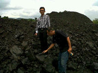 High Calorie Steam Coal South Kalimantan ready stock