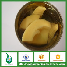 Canned food products you can import from China bamboo shoot in can