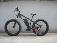 pakistan china electric bike