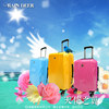 20'' 24'' 28'' ABS PC Series Travel Luggage