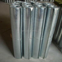 all kinds of galvanized perforated mesh rolls
