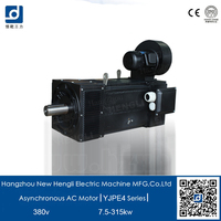 NHL efficiency IE4 40kw 3 phase electric asynchronous motor