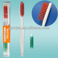portable toothbrush and toothpaste