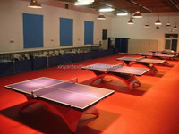 Simple Color Surface Treatment and PVC Material Table Tennis Court Floor