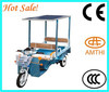 Solar Passenger Electric Three Wheeler Tricycle Price , high efficiency solar power electric tricycle , AMTHI