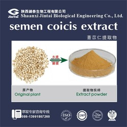 Natural plant extract 3:1 Jobstears Seed Extract powder