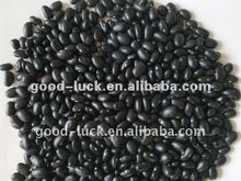 High Quality Chinese Small Black Beans Crop 2012