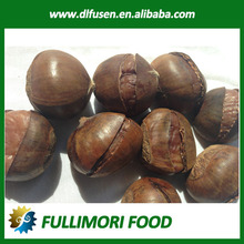the best quality and taste chestnut