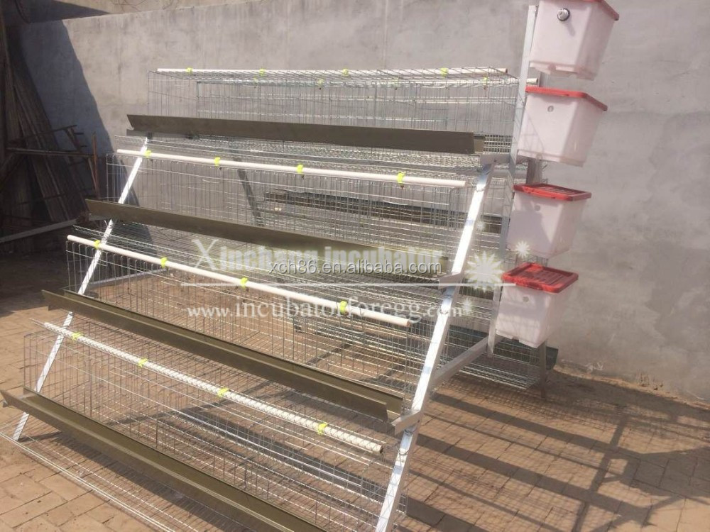 4 layers chicken cage 4 - .jpg