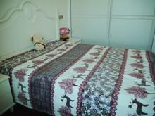 100 polyester fleece blanket animal/flower printed blanket light soft blanket