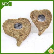 NTS Smart Cheap Peat Moss Plant Pots