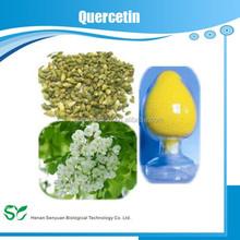 Herbal Extract 98% Quercetin,Sophora Japonica Extract