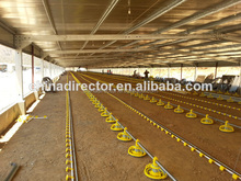 dfx free design all kingd of steel structure prefab chicken house design for chicken cage