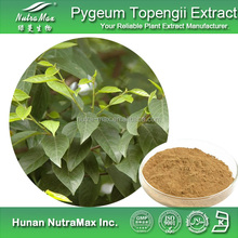 100% Natural Pygeum Extract,Pygeum Extract Powder,Pygeum Extract Supplier (2.5%~25% Phytosteroles ,4:1~20:1)