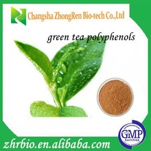 100% Pure Natural GMP Certificate Green tea extract /green tea polyphenols