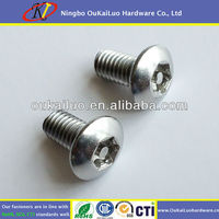 Stainless Steel Anti-theft Screws Torx With Pin