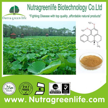Natural flavonoids Lotus Leaf extract plant extract 20%