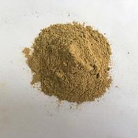 Natural Fruit Vegetable Powder:FRUIT POWDER Yacon powder