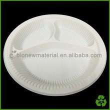disposable 10 inch plastic compartment plate