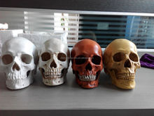 Wholesale skull medical students