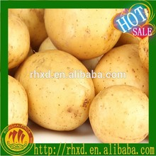 2015 new crop fresh turkish potato