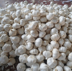 2014 crop Fresh pure white garlic from factory with Global Gap certificate