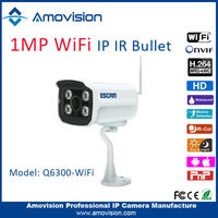 night vision mini camera Megapixel 3.6mm fixed lens WiFi Indoor/outdoor waterproof wireless security camera