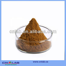 GMP/Haccp/ISO9001 Factory Provide Natural Black Cohosh Root Extract Powder in High Quality