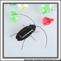 Cute solar cockroach for children or adult