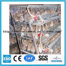 métal usine cage caille à vendre