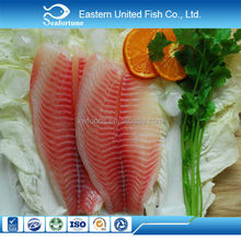 hot sale new arrival tilapia fillet no co treated