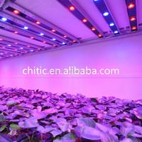 Full Spectrum LED Plant Light plant tissue cultured growing led light 20W