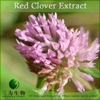 High Quality Red Clover Herb Extract Made in China