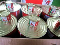 bulk food wholesale halal food products canned tomato paste 2200g+70g