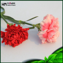 Wholesales Flowers Artificial Carnation