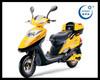 2015 Hot Sell 250W/350W/450W/500W/600W/1000W Electric Scooter/Motorcycle