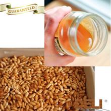 Kosher nature quality organic brown rice syrup