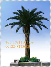 fiberglass artificial date palm tree hotel landscaping fake tree/competive price artificial palnt for water park decoration