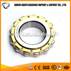 High precision Cylindrical Roller bearing RN219